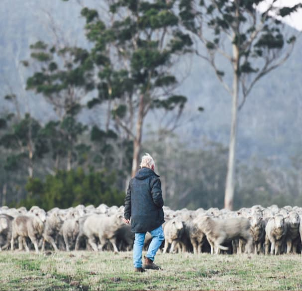 Blundstone Extends Scholarship To Support Agricultural Education And Jobs